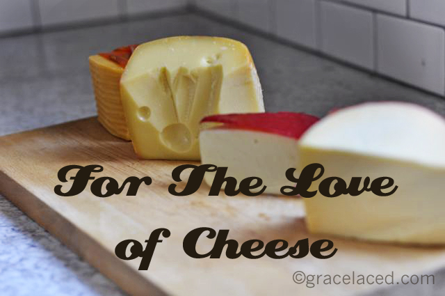 For The Love Of Cheese Series | gracelaced.com
